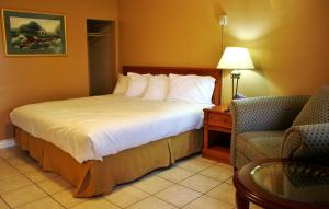 A bed or beds in a room at Tulip Motel