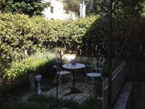 A garden outside Casa Olivia