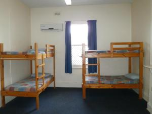 A bunk bed or bunk beds in a room at Launceston Backpackers