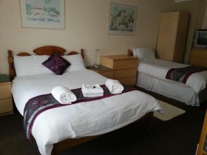 A bed or beds in a room at Llanion Lodge