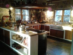 Kuchnia lub aneks kuchenny w obiekcie Villa Dos Pins