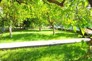 Сад в Ikiz Pension Bungalow