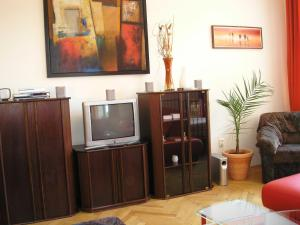 A television and/or entertainment center at Apartment Riverside - River View