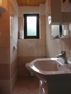 Koupelna v ubytování Holiday Home Jana
