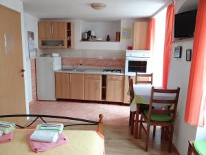 A kitchen or kitchenette at Apartments Sanja