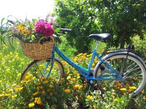 Jardín al aire libre en Casa Rural Basaula