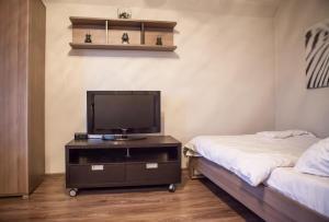 Телевизор и/или развлекательный центр в Flation Апартаменты Динамо
