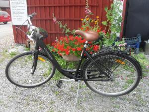 Cykling vid eller i närheten av Lekanders Bär & Boende