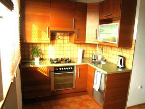Kuchnia lub aneks kuchenny w obiekcie Wilson Apartment