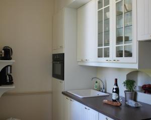 Cuisine ou kitchenette dans l'établissement Appartement du Château du Grand Bouchet