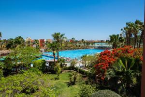 منظر المسبح في أرابيا أزور ريزورت او بالجوار