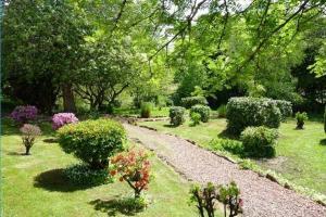 A garden outside Buchanan Arms Hotel