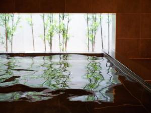 The swimming pool at or close to Super Hotel Shinjuku Kabukicho