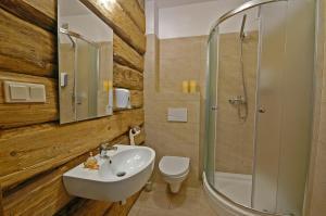 A bathroom at Dom na Skale - Apartamenty w Bieszczadach nad Soliną