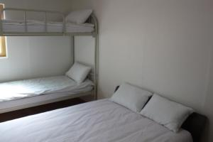 A bunk bed or bunk beds in a room at Dongdaemun Guesthouse