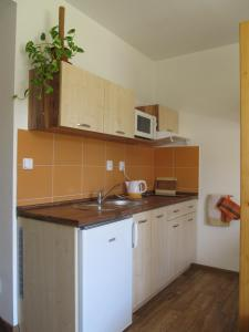 A kitchen or kitchenette at Berger Pec Privat