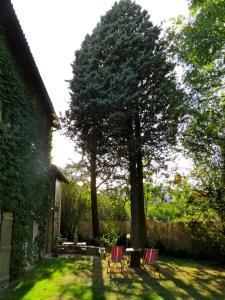 A garden outside L'Annexe