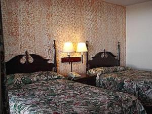 A bed or beds in a room at Economy Inn