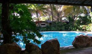 The swimming pool at or near Posada El Jardin