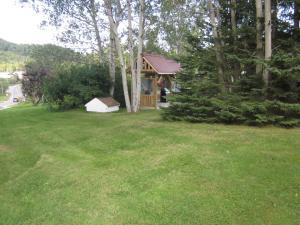 A garden outside Skyline Cabins