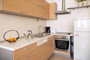 Кухня или мини-кухня в Apartment Fedja