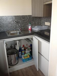 A kitchen or kitchenette at Studio ABI