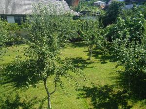 Сад в Гостевой Дом на Каспийской