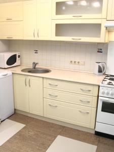 Кухня или мини-кухня в Apartments na Odesskoy