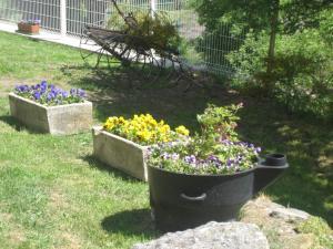 Jardin de l'établissement Eco-gîte rural le charbonnier