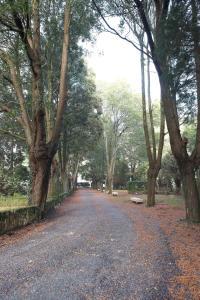 A garden outside Casa Diocesana VIA LUCIS