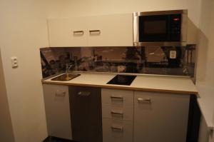 Kuchyň nebo kuchyňský kout v ubytování Apartmany Ostrava
