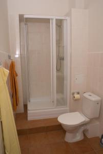 Ein Badezimmer in der Unterkunft Apartment Havlíčkova