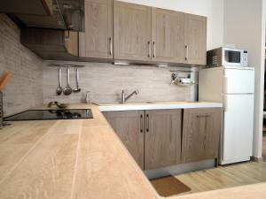 Kuhinja oz. manjša kuhinja v nastanitvi Apartment Monte Carlo
