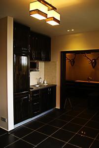 A kitchen or kitchenette at Viesu nams Raibais Asaris