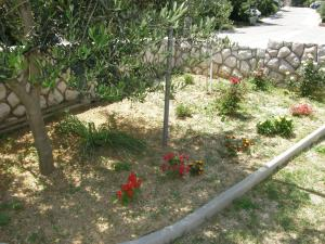 A garden outside Apartments Cubranic
