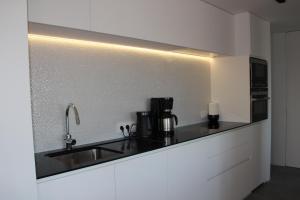 Cuisine ou kitchenette dans l'établissement Duplex Penthouse Plaza