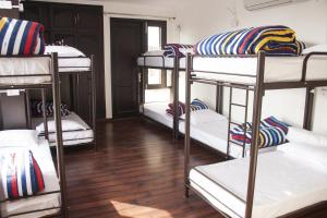 A bunk bed or bunk beds in a room at Madpackers Delhi