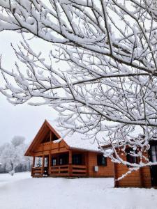 Ferienpark Arber im Winter