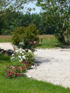 A garden outside Le Mas Saint Jacques