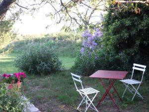 A garden outside Chez Bacchus
