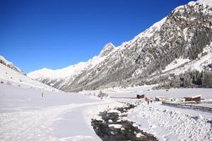 s'Huamatl im Winter