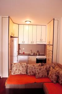 A kitchen or kitchenette at Studio Apartment Nika Anđusa
