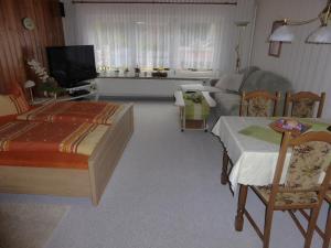TV/Unterhaltungsangebot in der Unterkunft Ferienhaus Weber Bad Frankenhausen
