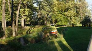 Ogród w obiekcie Piotrowice Nyskie Palace