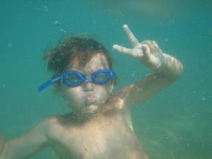 Snorkeling and/or diving at the apartment or nearby