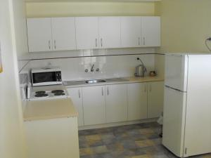 A kitchen or kitchenette at Armidale Ace Apartments