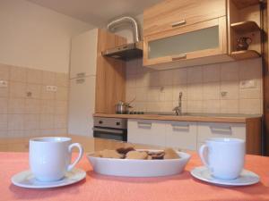 Kuhinja oz. manjša kuhinja v nastanitvi Apartments Čumar