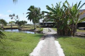 Jardin de l'établissement Raiatea Airport Bungalow