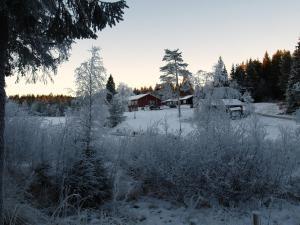 Vindfjelltunet Gjestegaard om vinteren