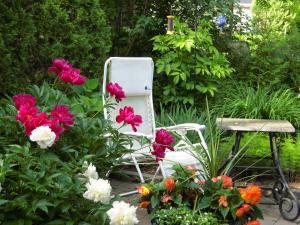 A garden outside L'Arvidienne Couette et Café